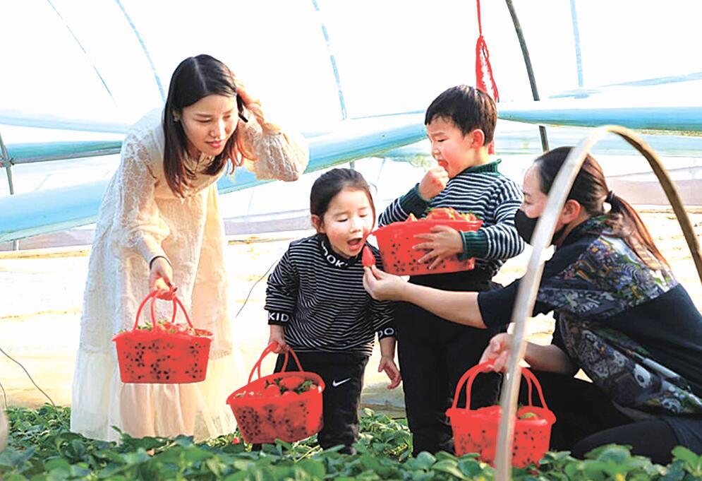 海州:放大主城优势  农民拥抱美好生活