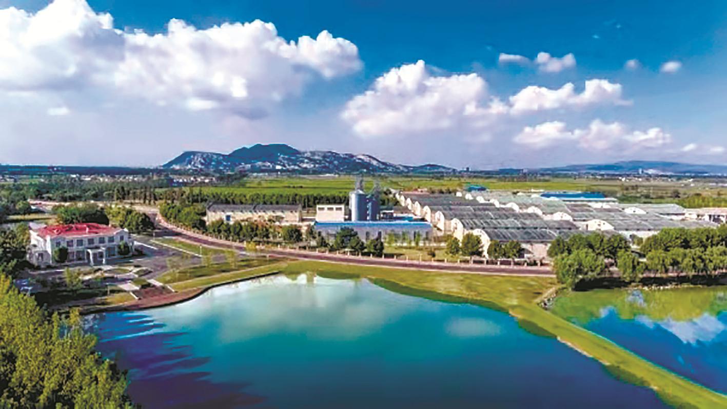 """連云港""""十四五""""規劃綱要解讀:建設美麗港城  實現發展與生態雙贏"""