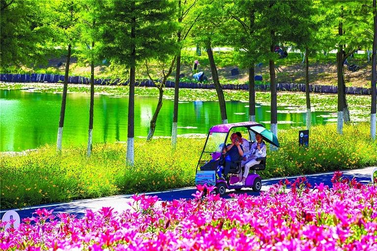 西双湖百合主题园正式免费开园