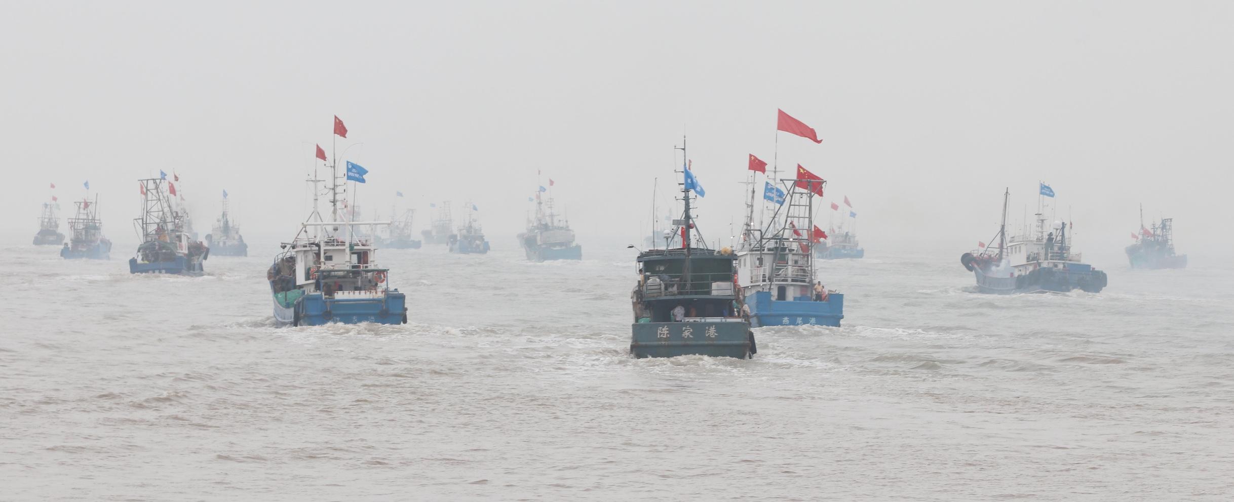 全国第二个毛虾专项捕捞试点在燕尾港启动!