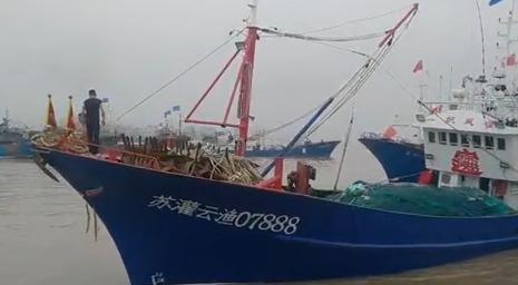 连云港地产鲜虾皮将大量上市