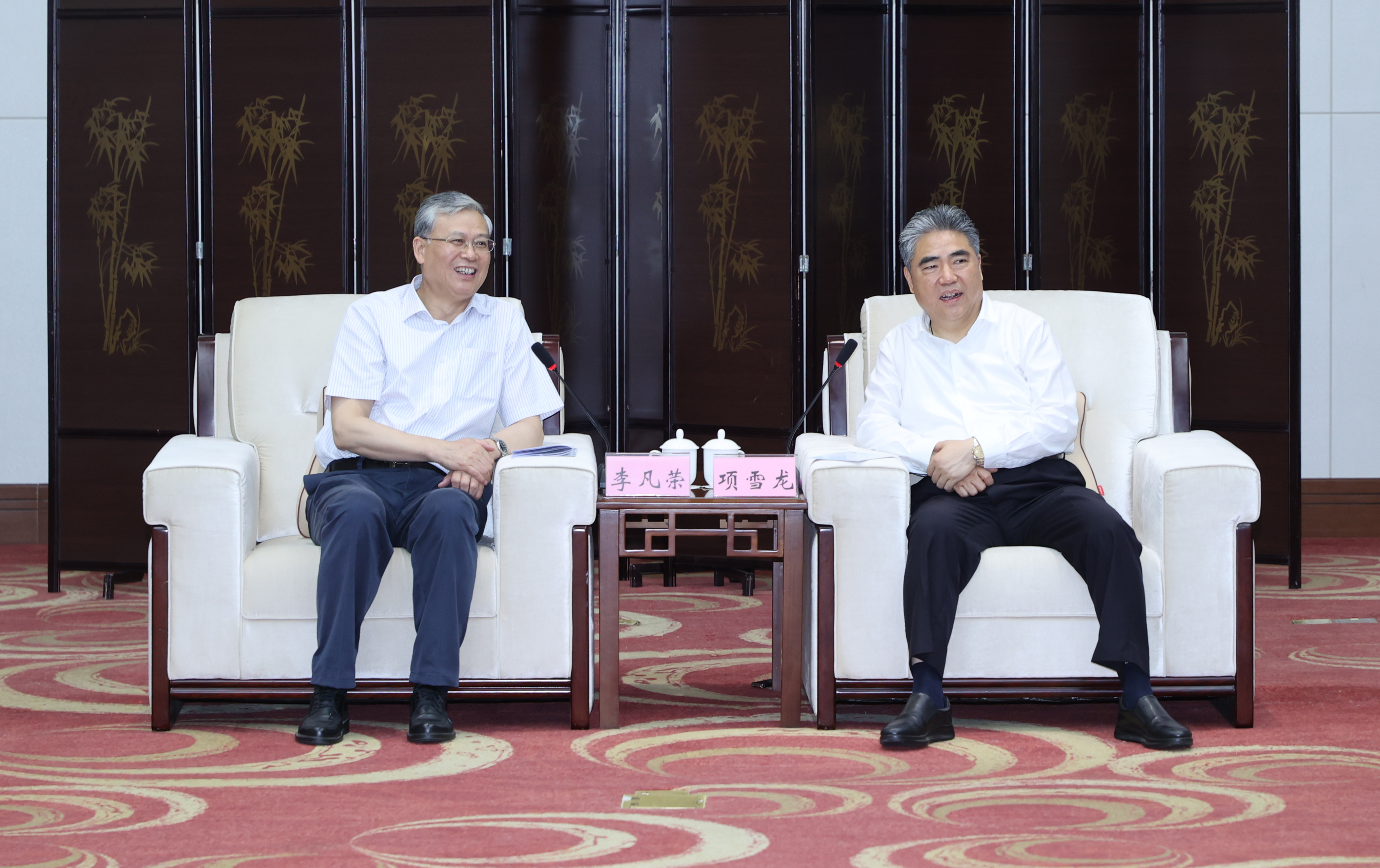 項雪龍會見中國中化總經理李凡榮一行 方偉參加