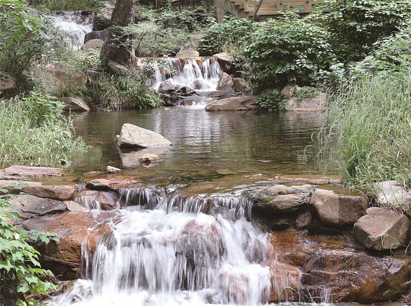 花果山中溪水潺潺