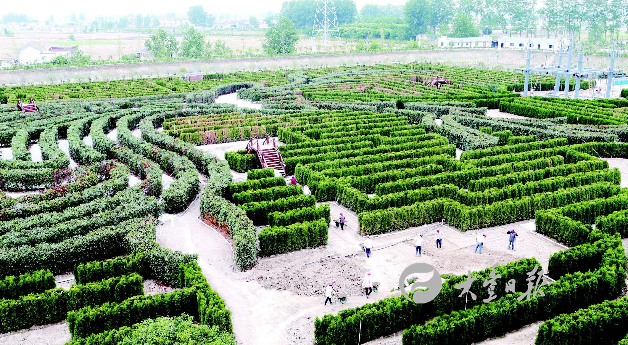 壁纸 成片种植 风景 平面图 植物 种植基地 桌面 2122_1165