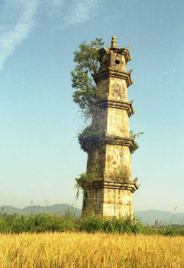 风景图古塔树木
