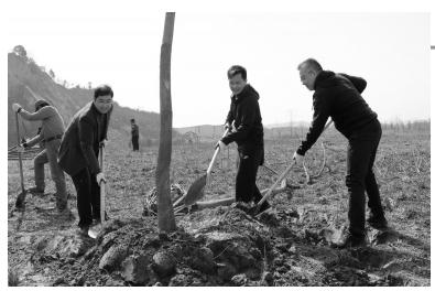 常州市总机关一支部开展春季植树活动