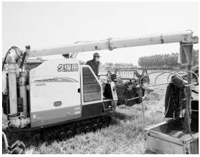 海安市55万亩小麦陆续进入收获期